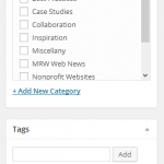 WordPreess Categories and Tags Interface