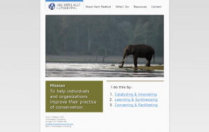 A solitary elephant stands on the home page of Archipelago Consulting