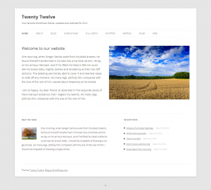 The Twenty Twelve front page template