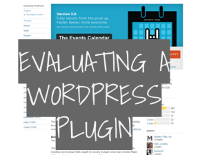Evaluating a WordPress Plugin
