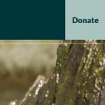 Light blue donate button in dark blue navigation bar, next to dark blue search button