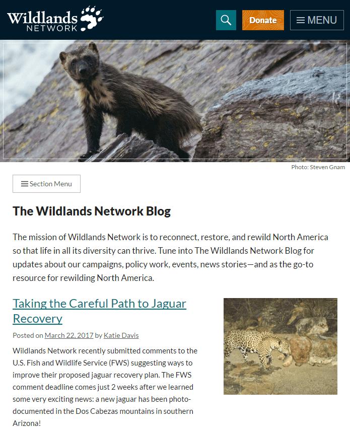 Medium size screenshot of Wildlands Network Blog