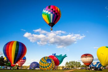 A hot air balloon rises above a number of others preparing to take flight.