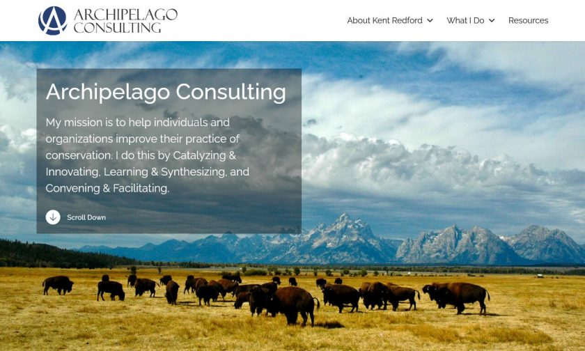 Archipelago Consulting home page: My mission is to help individuals and organizations improve their practice of conservation.